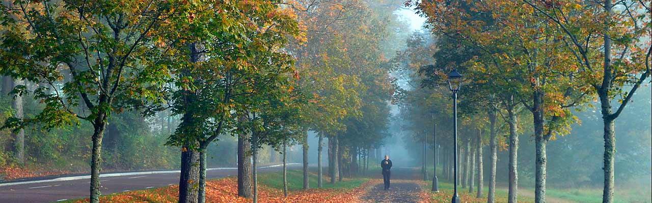 Bald Herbst