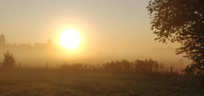 Sonnenaufgang /Jahresbeginn
